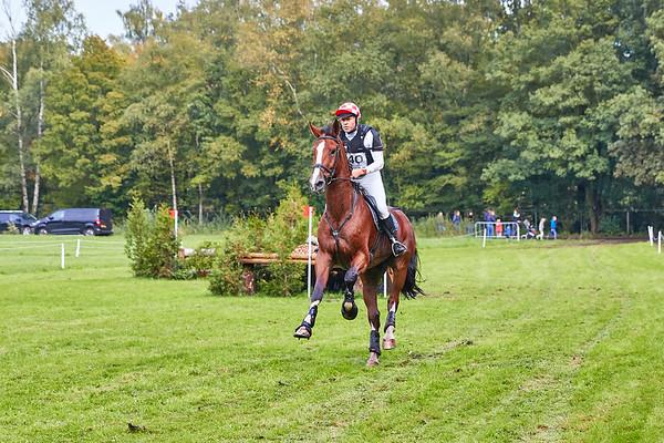 M Horses Hattem 2019