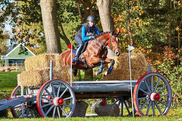 M Horses Barchem 2019
