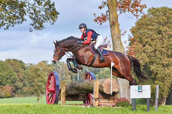 L Horses Barchem 2019