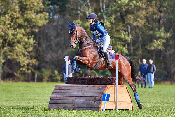 M Horses Rekken 2019