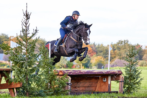 B Horses Bathmen 2019
