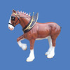 Clydesdale #7012