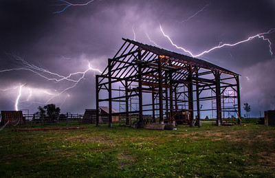 Summer Storm / Tillium Dell Farm / Galeton IL