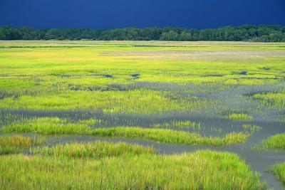 National Estuaries