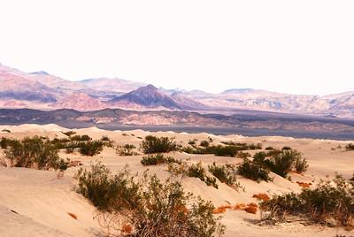 Death Valley, CA 123