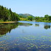6-22-12 Long Pond-Jordan Creek Hike, ME 008