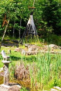 Ash River-Voyageurs national Pk, MN 7-8-10 053