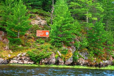 Ash River-Voyageurs national Pk, MN 7-8-10 018