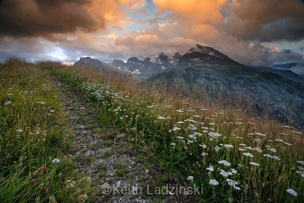 Slow path with wildflowers lining it, in the French Alps.