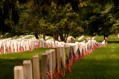 Acres of sorrow, acres of pride - America's heroes. For us they died. They went to war, some barely men And never made it home again.