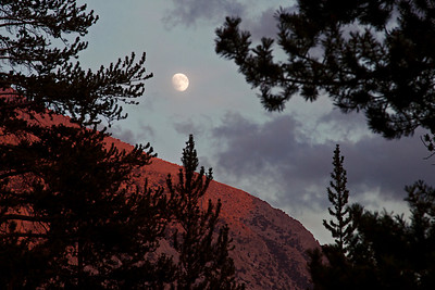 Vidette Meadow Moonrise