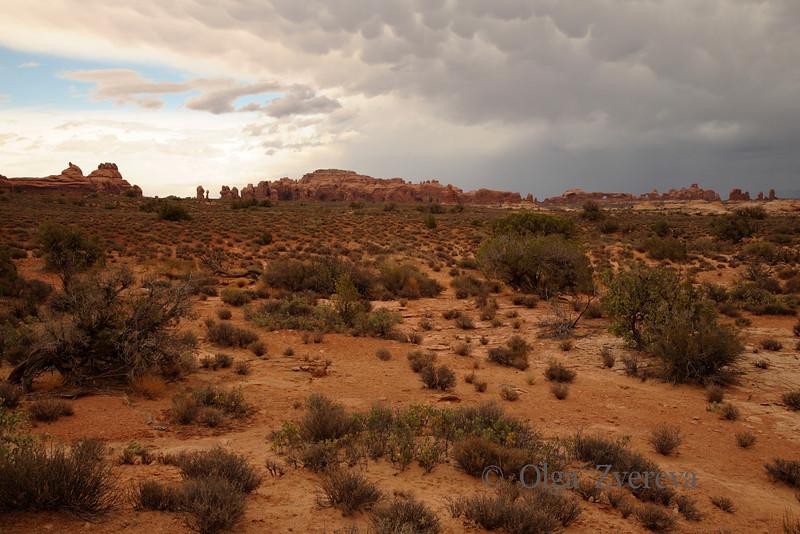 <p>Desert, Arches National Park, Utah, USA</p>