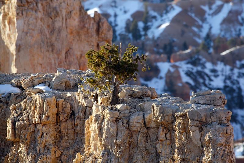 <p>Bryce Canyon National Park, Utah, USA</p>