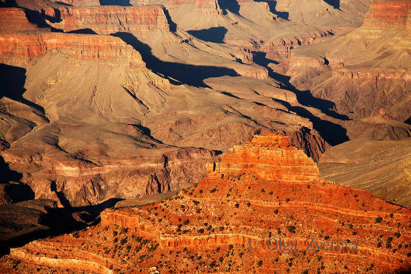 <p>Golden Light, South Rim, Grand Canyon National Park, Arizona, USA</p> <p>September 2009</p>