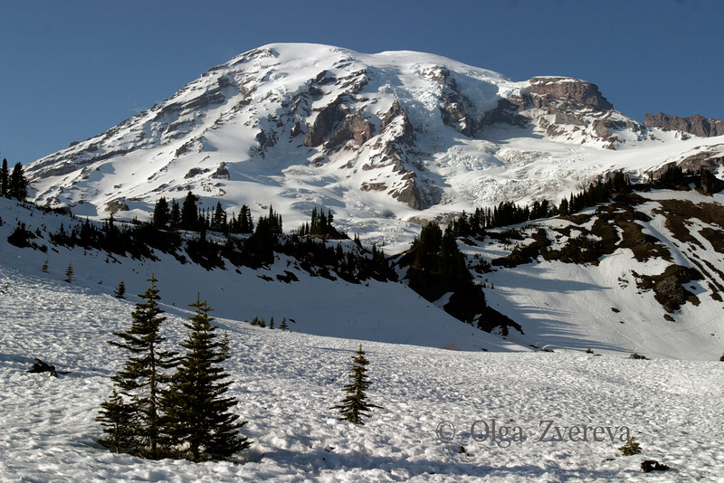 <p>Mount Rainier National Park, Washington, USA</p>
