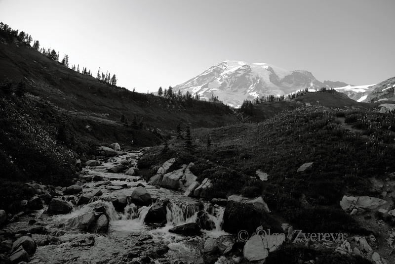 <p>Mount Rainier National Park, Washington, USA</p>