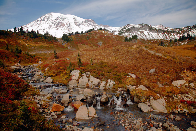 <p>The color of the alpine meadows around the Paradise area at Mt Rainier is spectacular in autumn time.</p> <p>Mount Rainier National Park, Washington, USA</p>