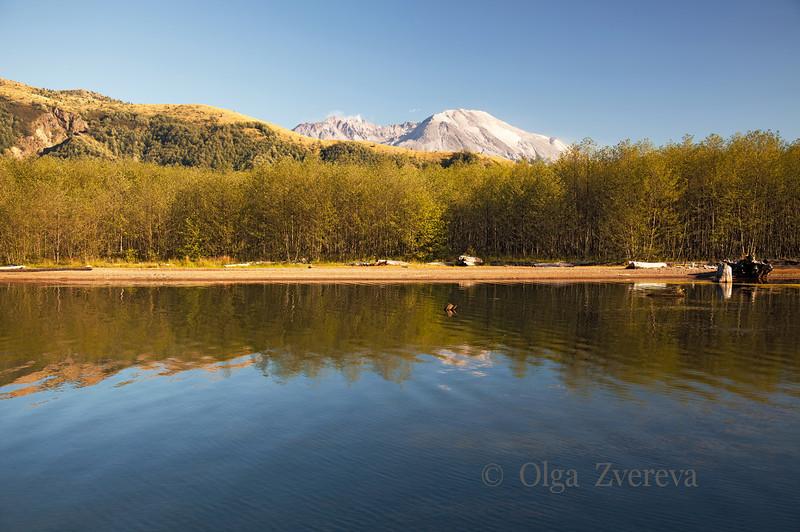 <p>Coldwater Lake. Mount St Helens National Volcanic Monument, Washington, USA. 9/2/2012</p>