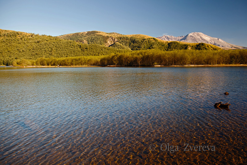 <p>Coldwater Lake. Mount St Helens National Volcanic Monument, Washington, USA. 9/2/2012</p>