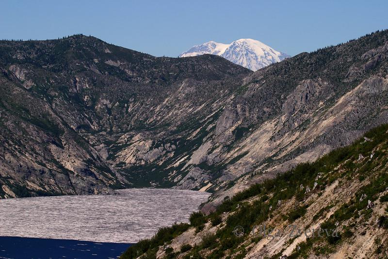 <p>Spirit Lake with Mount Rainier on background. Windy Ridge Visitor Center.</p> <p>Mount St Helens National Volcanic Monument, Washington, USA</p>