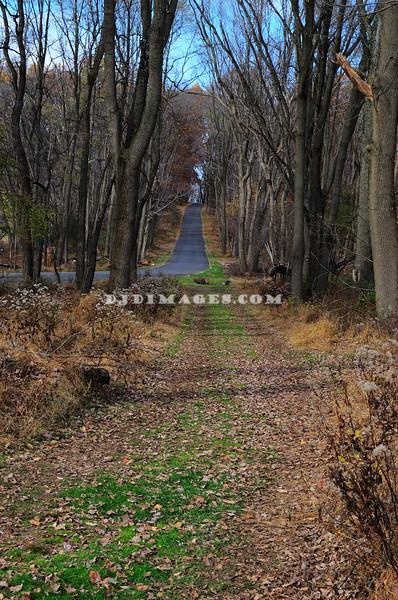 Beginning of Soldier's Hut Trail.