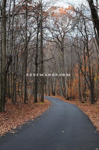 Soldier's Hut Trail.