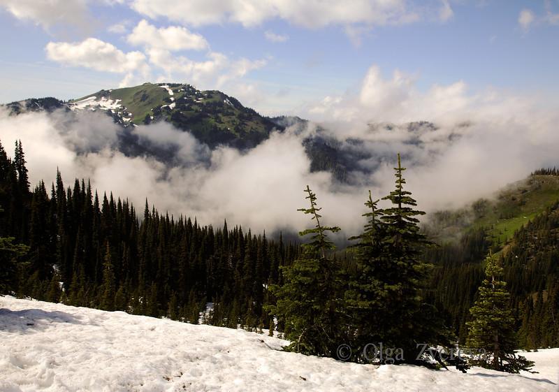<p>View from Hurricane Ridge. Olympic National Park, Washington, USA</p>