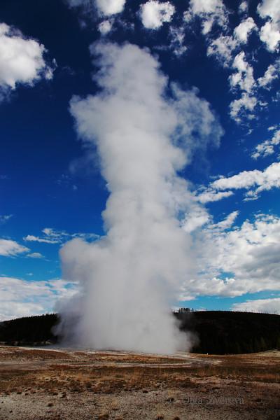 <p>Old Faithful Geyser, Upper Geyser Basin, Yellowstone National Park, USA</p>