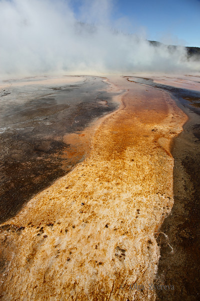 <p>Yellowstone National Park, USA</p> <p>October, 2012</p>