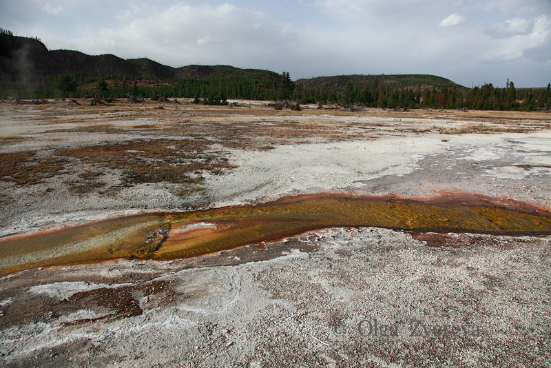 <p>Biscuit Basin, Yellowstone National Park, USA</p>