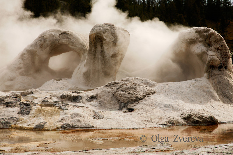"<p>Grotto Geyser, Yellowstone National Park, USA</p> <p>Grotto Geyser is named for the interesting cavern-like shape of its ""cone"".</p>"