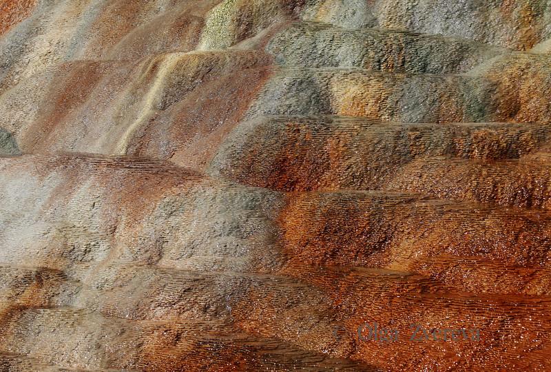 <p>Orange Spring Mound details, Mammoth Hot Spring area, Yellowstone National Park, USA</p>