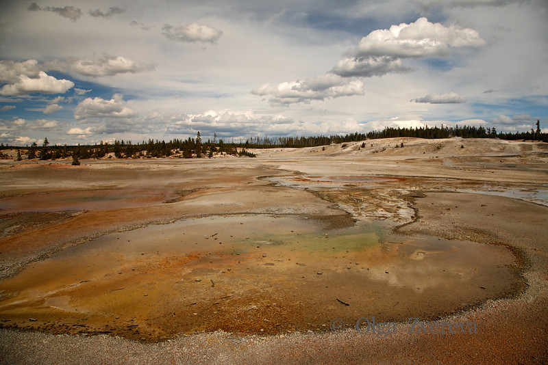 <p>Norris Geyser Basin, Yellowstone National Park, USA</p> <p>Norris Geyser Basin is the hottest and most changeable thermal area in Yellowstone.</p>