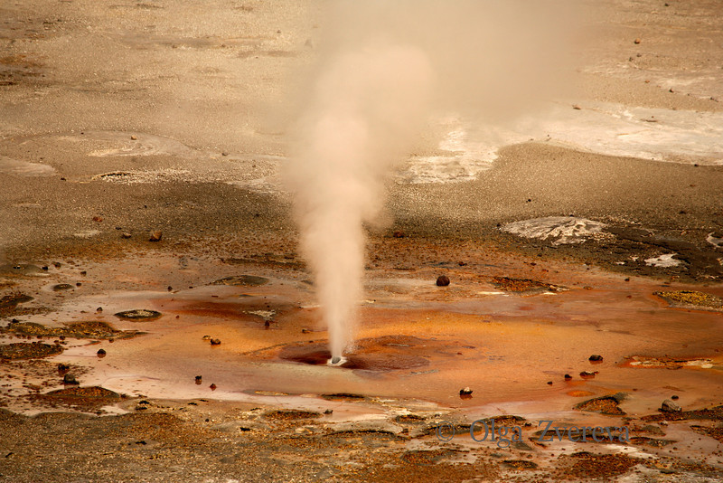 <p>Steam geyser, Norris Geyser Basin, Yellowstone National Park, USA</p>