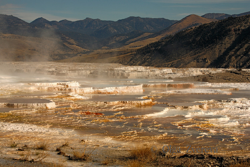 <p>Main Terrace View. Mammoth Hot Spring area, Yellowstone National Park, USA</p>