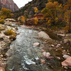 <p>Virgin River, Zion National Park, Utah, USA</p>