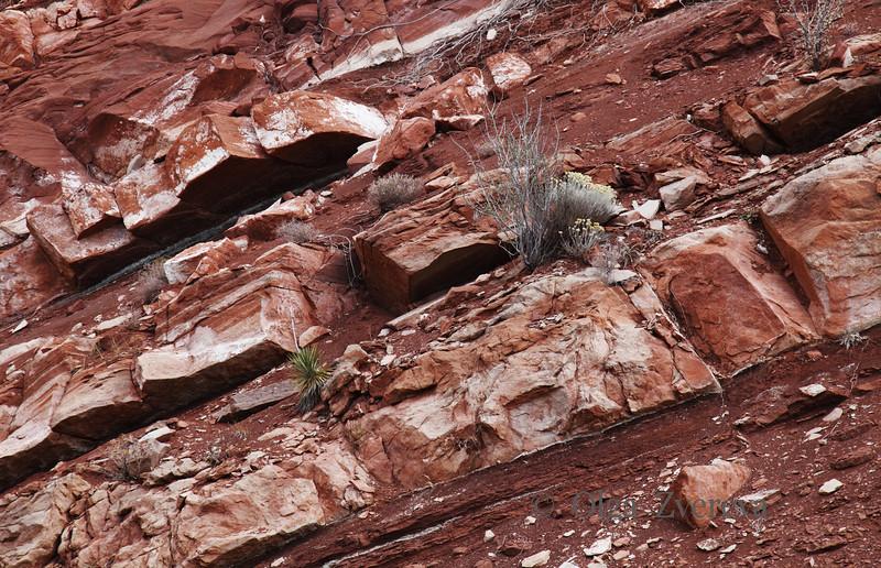 <p>Kolob Canyon, Zion National Park, Utah, USA</p>