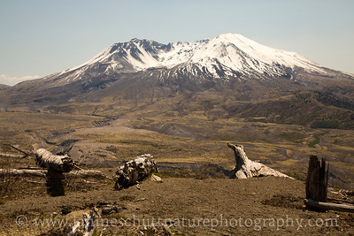 View of Mt. St. Helens from the Loowit Viewpoint near Johnston Ridge.  Photo taken in May 2015.