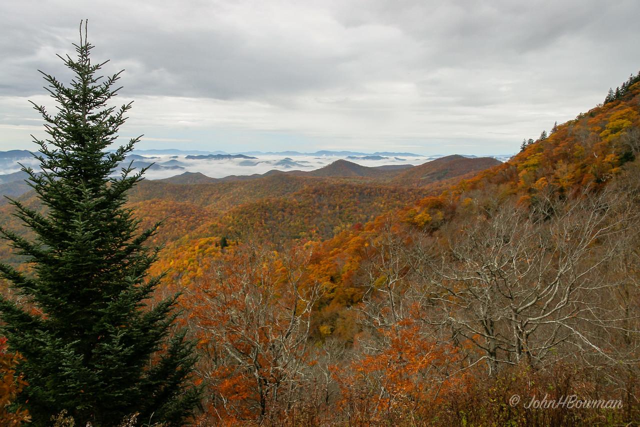 Cloud Inversion - Lone Bald Overlook