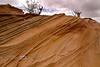 Coyote Buttes South, Southwest Landscape at its Best - Arizona/Utah Border