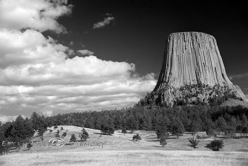 Iconic Beauty - Devils Tower shot in Black & White - Photo by Pat Bonish