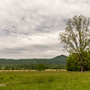 View from Dan Lawson House - Cades Cove