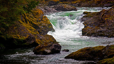 Salmon Cascade Sol Duc River Olympic NP WA_8456
