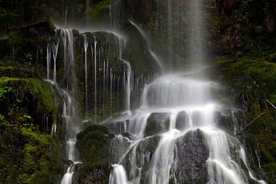 Inner Creek Falls Quinault WA_8285
