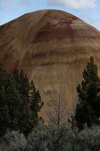 Red Hill Painted Hills_9985