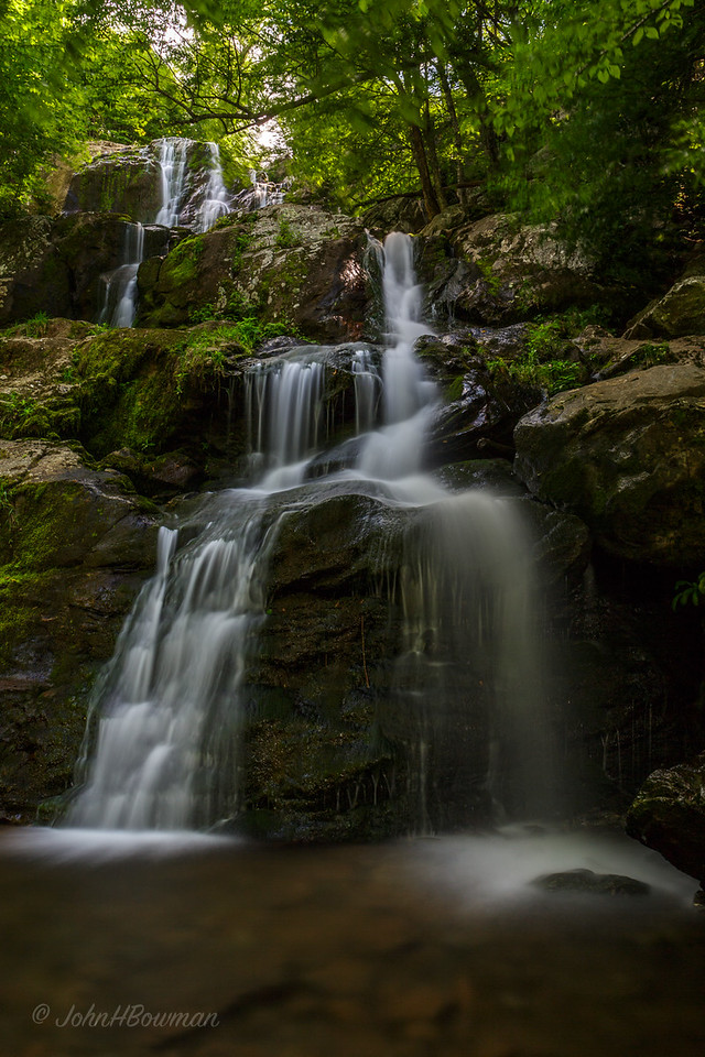 Dark Hollow Falls, SNP