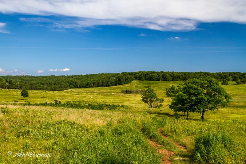 Big Meadows - Summer