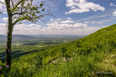 Gooney Run Overlook - SNP