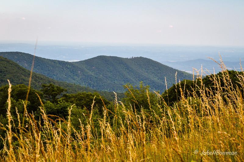 Thorofare Mountain Overlook