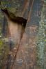 Multiple Animals carved into the sandstone - Hopi Petroglyphs at V Bar V Ranch Heritage Site, Arizona